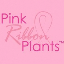 Pink Ribbon® Plants