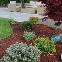 A layer of organic mulch can be extremely beneficial when properly applied.