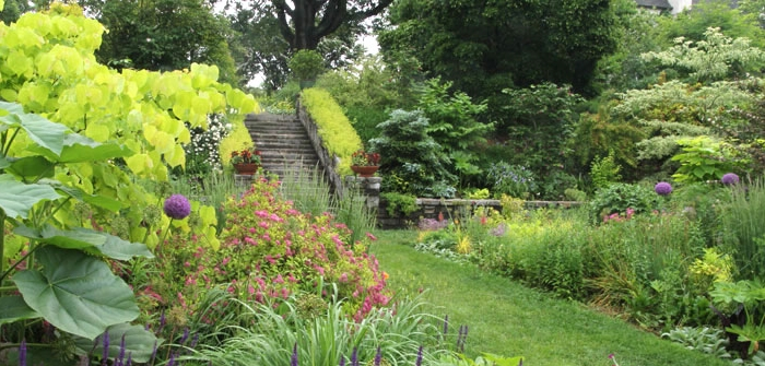 Wildwood\'s Plant Library » Wildwood Nursery & Garden Center